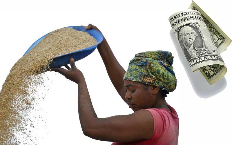 zambia-farmer-grant-stanbic