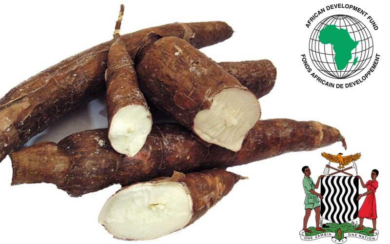 afdb-zambia-loan-cassava