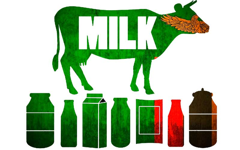 zambia-milk-production