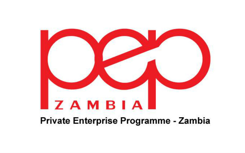 zambia-pepz-procurement