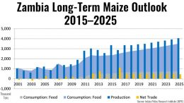 Zambia maize production outlook